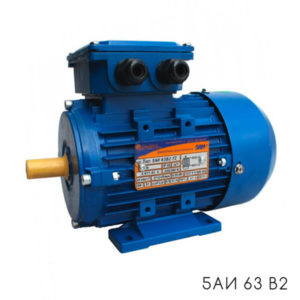общепромышленный электродвигатель 5АИ 63 В2
