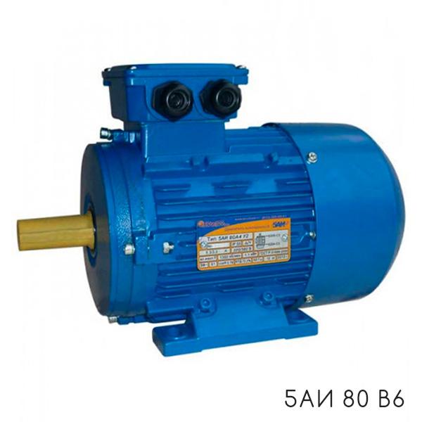 электродвигатель 5АИ 80 В6